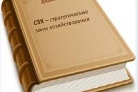 И.А. Дедюхова «СЗХ — стратегические зоны хозяйствования»